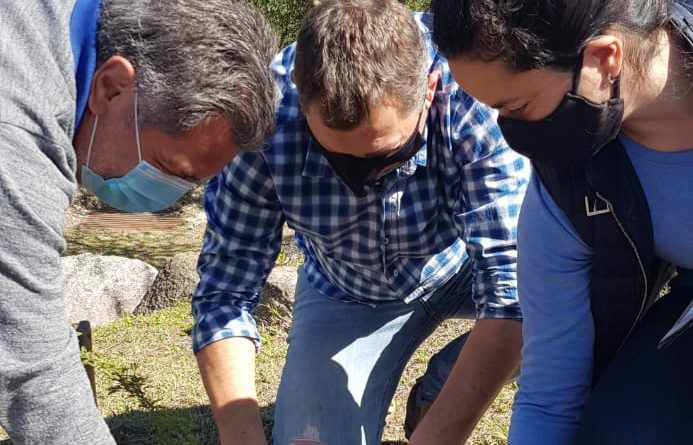 JUNTO A LA PROVINCIA REFORZAMOS EL PLAN DE ARBOLADO URBANO LOCAL